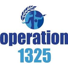 Operation 1325