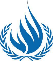 Rapport 1-Årsrapport från FNs kommissionär för mänskliga rättigheter